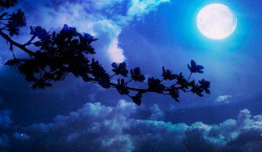 La relación entre la luna y...