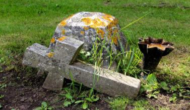 Ni entierro ni cremación,...
